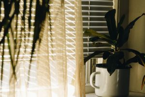how to keep blinds clean